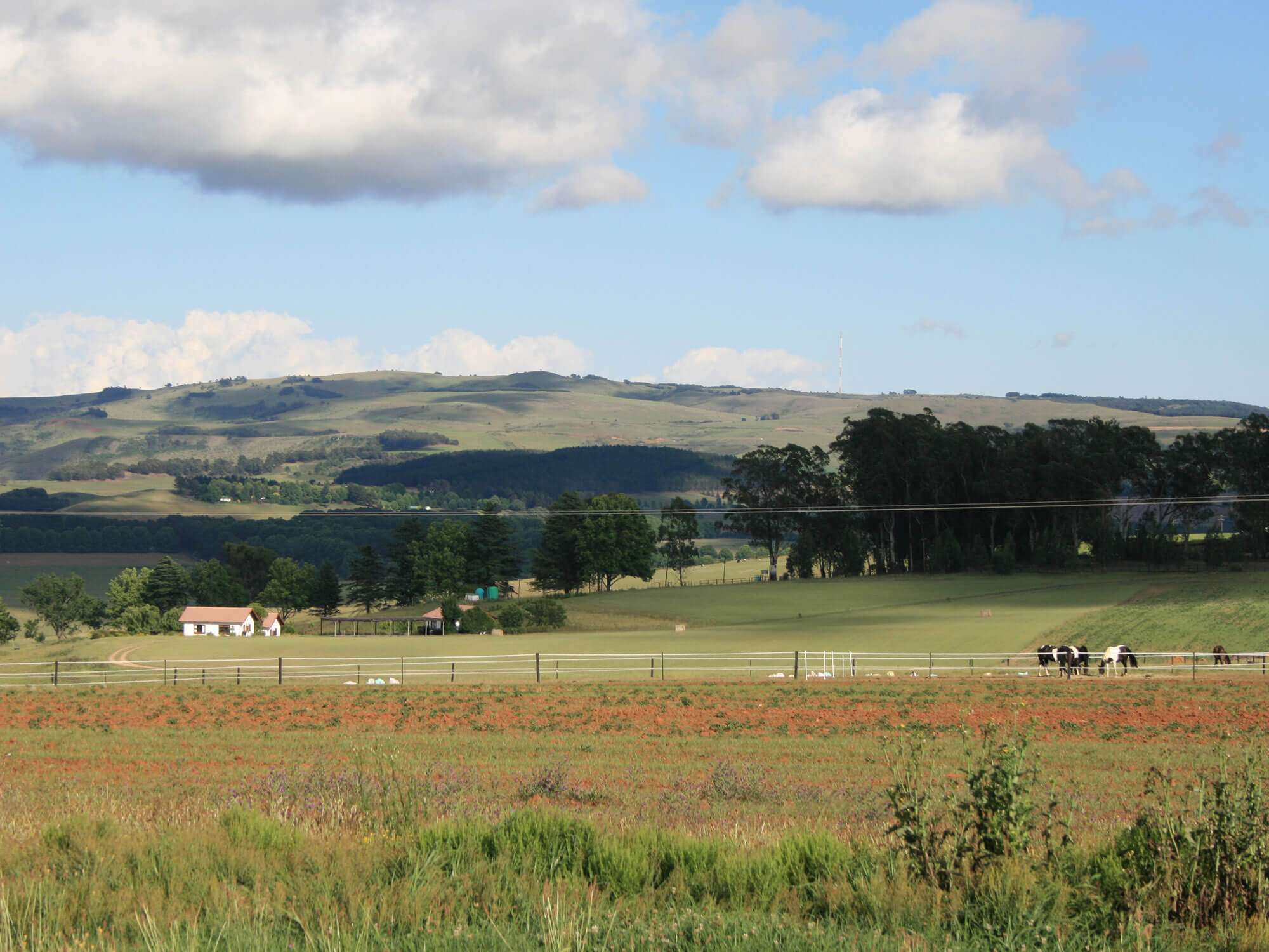 kzn-midlands-accommodation (3)